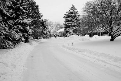 Road.b.w