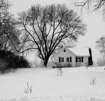 House.b.w