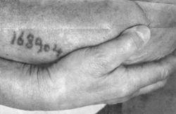 Dachau tattoo