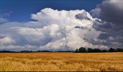 Cathedrals_of_the_plains_1280