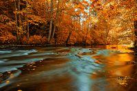 Autumn.duluth