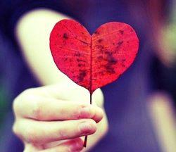 Heartleaf