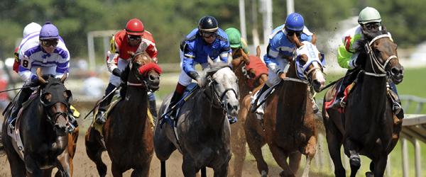 Canterbury-horses-running