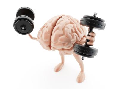 Minnesota Bridge: The Brain Muscle