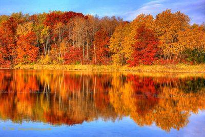 Mn autumn